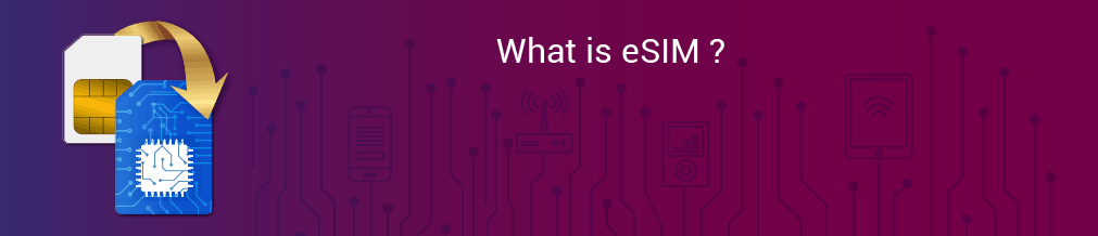 What is eSIM ? The Future Telecommunication Technology