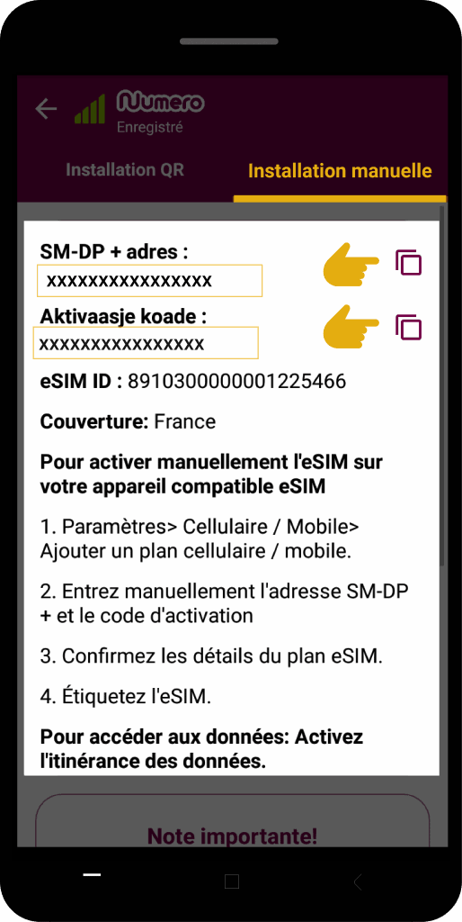 how to set up esim manually